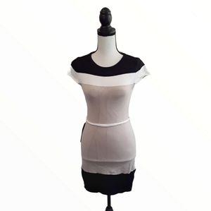 NWT Bebe Color Block Body Con Dress!